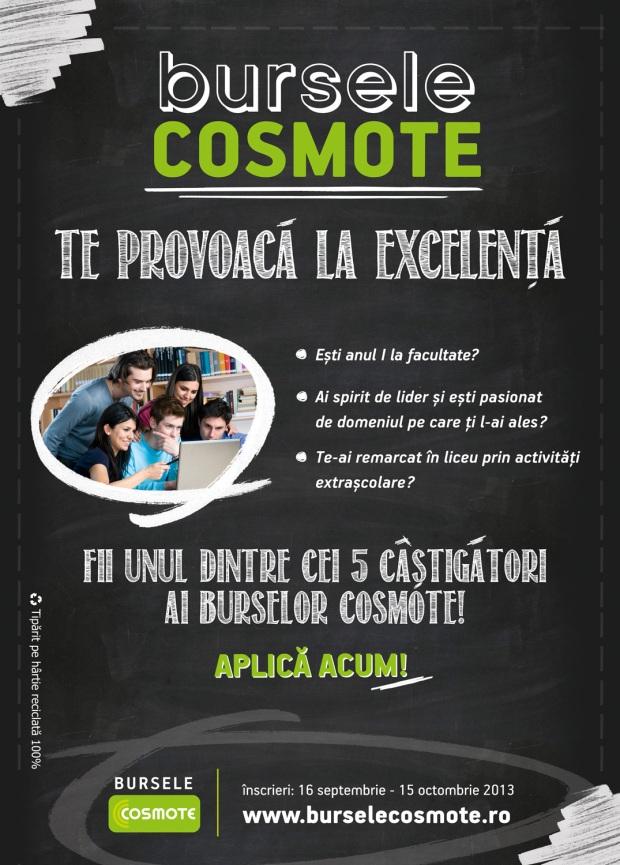 Bursele COSMOTE 2013